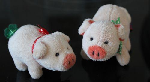 teddy bears piglet lucky charm