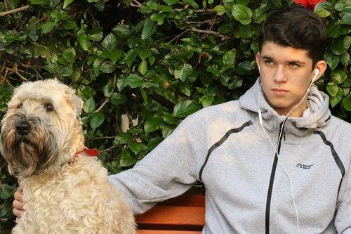 teenager  dog  terrier
