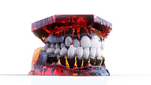teeth jaw 3d model