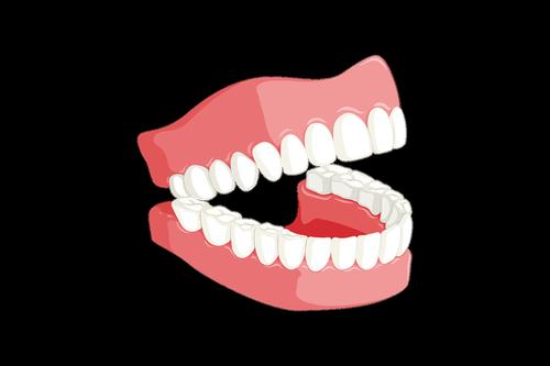 teeth  dentist  mouth
