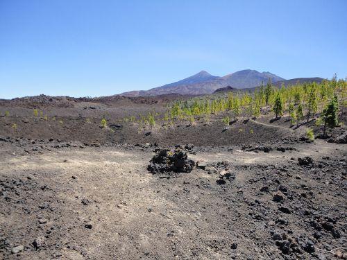 teide,Tenerifė,vulkanas,el teide,Ispanija,Teide nacionalinis parkas,Kanarų salos,gamta,pico del teide,kalnas,Nacionalinis parkas,geologija,vulcan,kraštovaizdis,kalno teide,pico de teide,toli