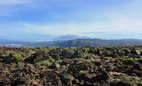 teide,vulkanas,Tenerifė,gamta,pico de teide,kranto,Rokas,akmenys,Kanarų salos