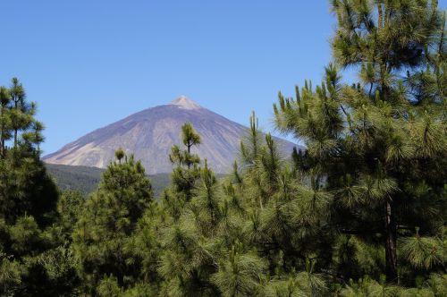 teide tenerife volcano