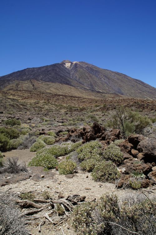 teide national park national park rock