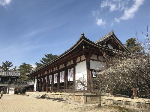 temple horyuji japan
