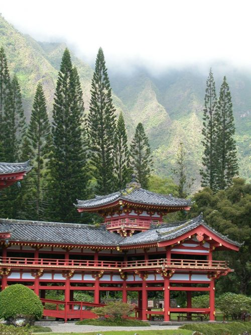 temple hawaii trees