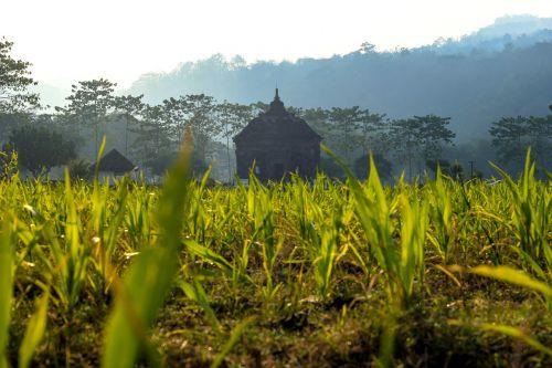 temple landscape hinduism