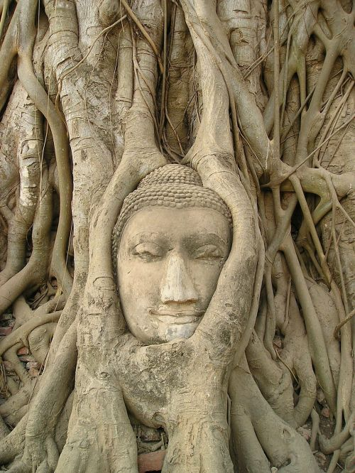 temple thailand head