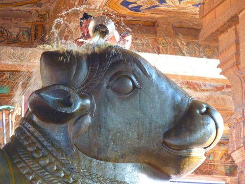 temple bull temple nandi