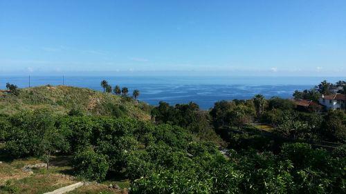 tenerife nature landscape
