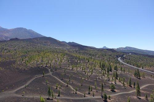 tenerife  teide  landscape