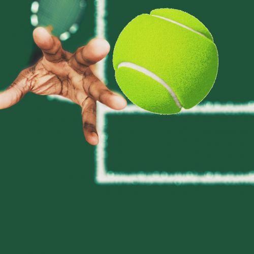 tennis athlete sport