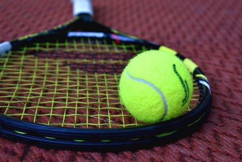 tennis  racket  tennis ball
