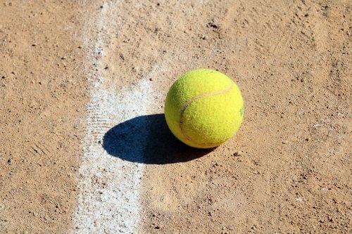 tennis  tennis ball  sport
