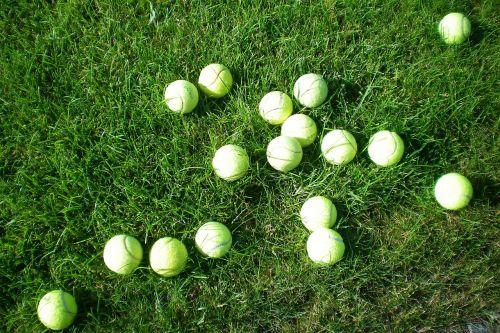 tennis balls mess meadow