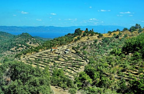 terrace cultivation terrace greece