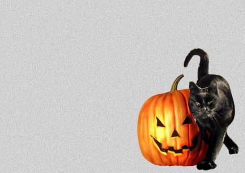 terror halloween chilling