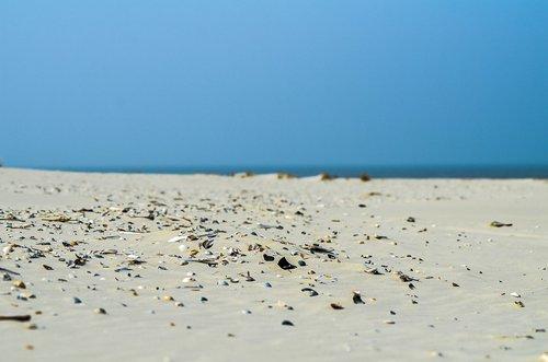 terschelling  beach  blue