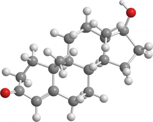 testosterone organic chemistry hormones