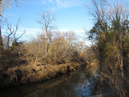 Texas Stream Winter