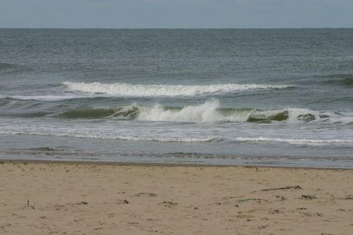 texel,sala,papludimys,jūra,smėlis,vandenynas,vanduo,mėlynas,šventė,vaizdas,Smėlėtas paplūdimys,nuostabus paplūdimys