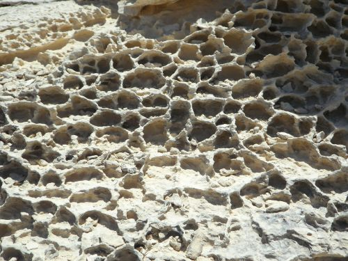 texture background rock