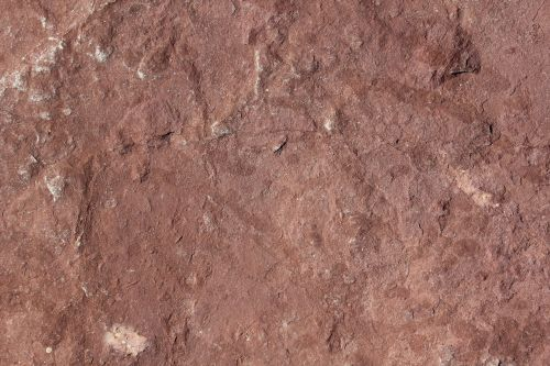 texture stone brown