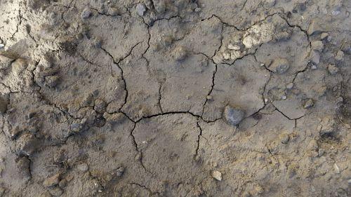 texture background soil