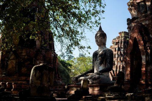 thailad asia buddha