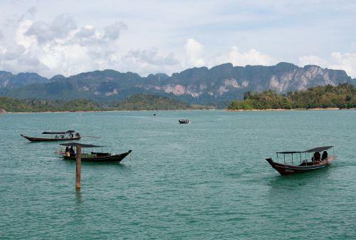 thailand jungle thai