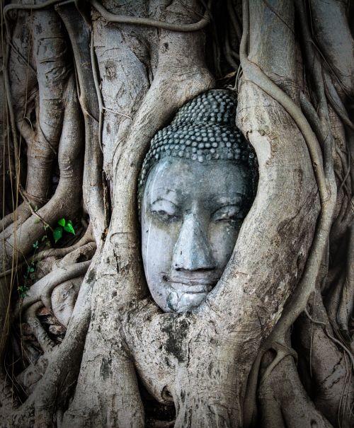 thailand asia travel