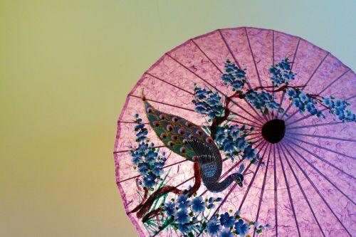 thailand japan parasol