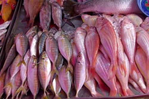 thailand-market  fish  seafood