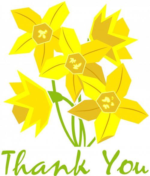 Thank You Daffodils