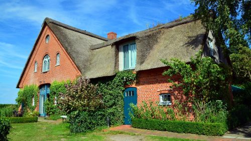 thatched cottage rural reed