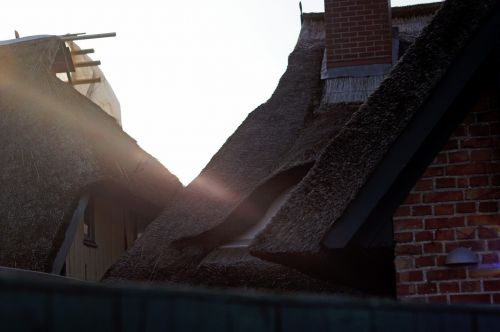 thatched roof roofs ensemble