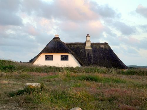thatched roof home reed