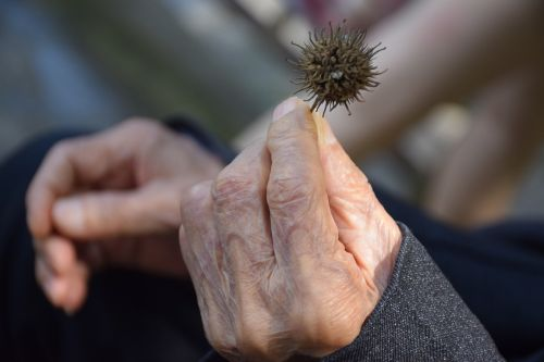 the aged hand old age