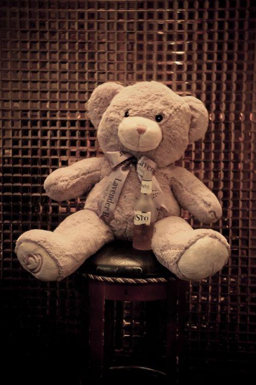 the bear wine bottle cute