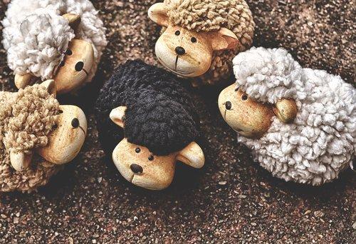 the black sheep  sheep  figures