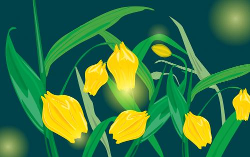 the bluebells of scotland flower yellow