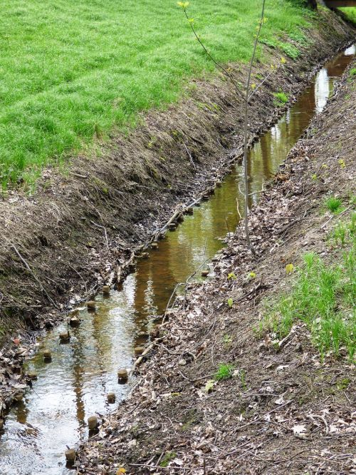 the brook brook water
