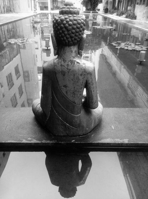 the buddha the buddha figure back