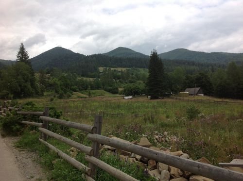 the carpathians mountains summer