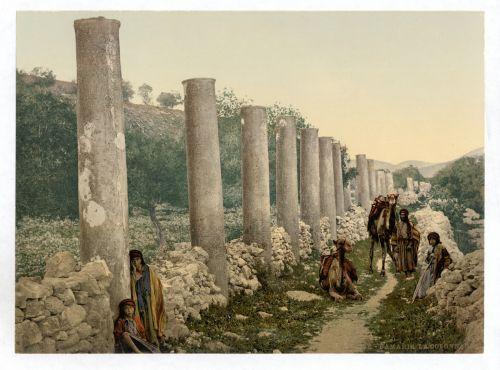 The Colonnade Samaria