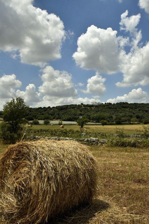 the countryside of puglia campaign barsento the countryside of alberobello