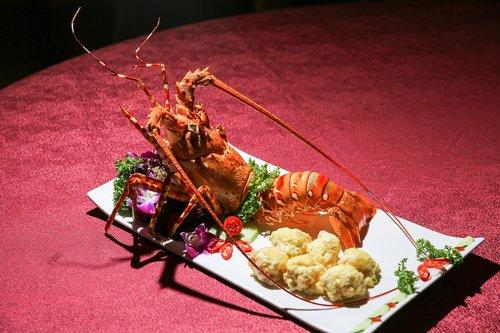 the dish  seafood
