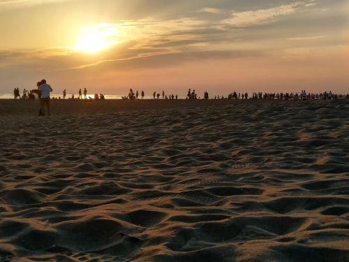 the evening sun sand beach the crowds