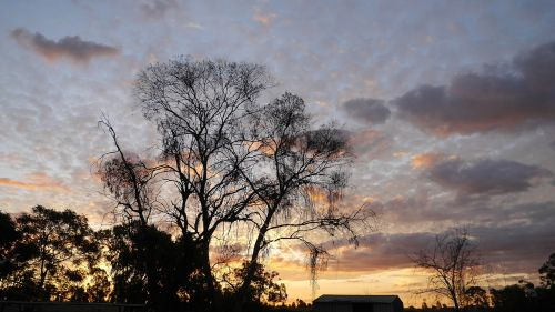 the evening sun landscape sky