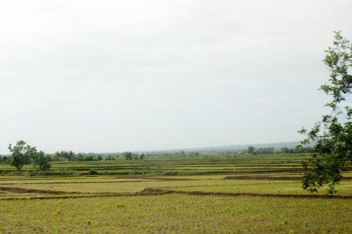 ūkis, žemės ūkio paskirties žemė, medžiai, mažas & nbsp, namas, debesys, žalias & nbsp, fonas, žalias, fonas, kalnas, gamta, žalia žolė, žalias & nbsp, gyvenimas, dangus, ūkis 4